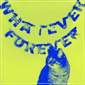 kittenforever